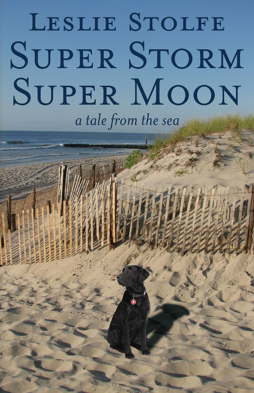 Leslie Stolfe Super Storm Super Moon. A Tale from the Sea rara masterson the storm is over