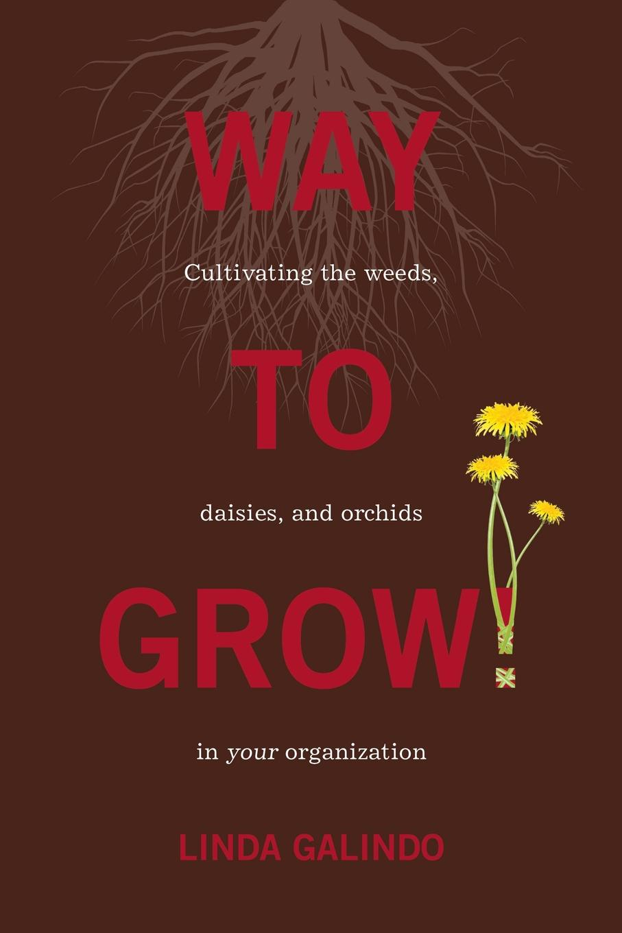 Linda Galindo Way To Grow.. Cultivating the Weeds, Daisies, and Orchids in Your Organization the dead daisies karlsruhe