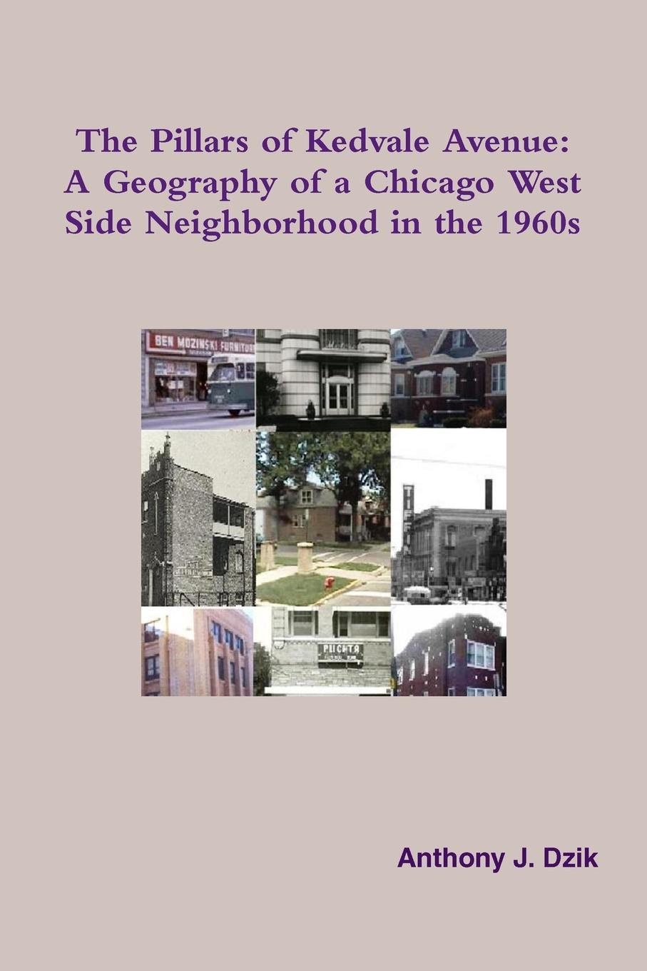 Anthony Dzik The Pillars of Kedvale Avenue. A Geography of a Chicago West Side Neighborhood in the 1960s недорго, оригинальная цена