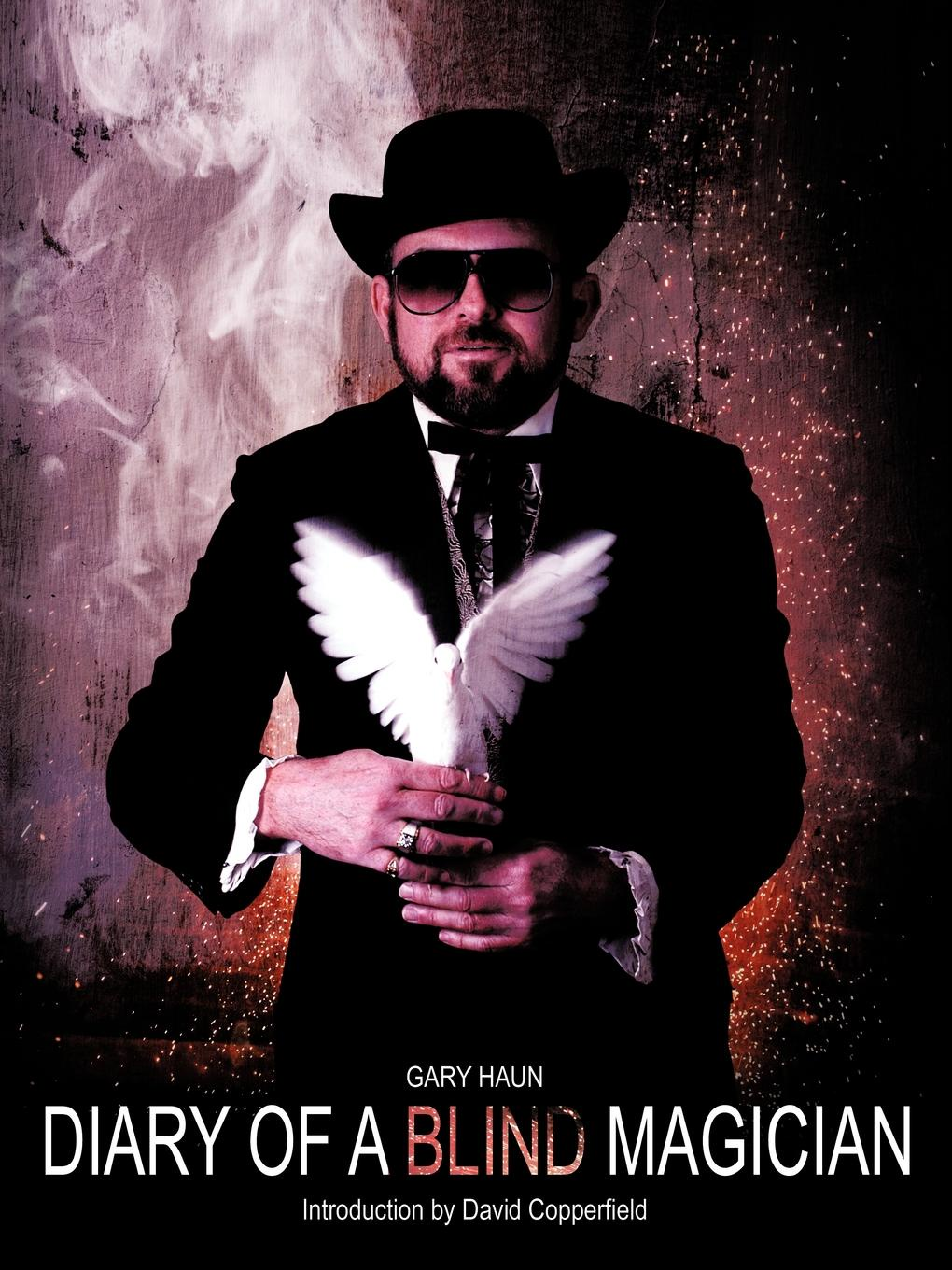 лучшая цена Gary Haun Diary of a Blind Magician. Secrets of the Amazing Haundini