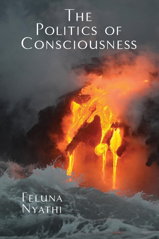 Feluna Nyathi The Politics of Consciousness these are the avengers level 1