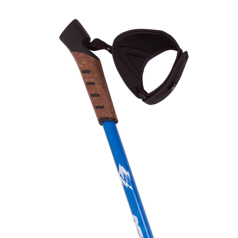 Палки для трекинга RGX TFG-01, синий RGX