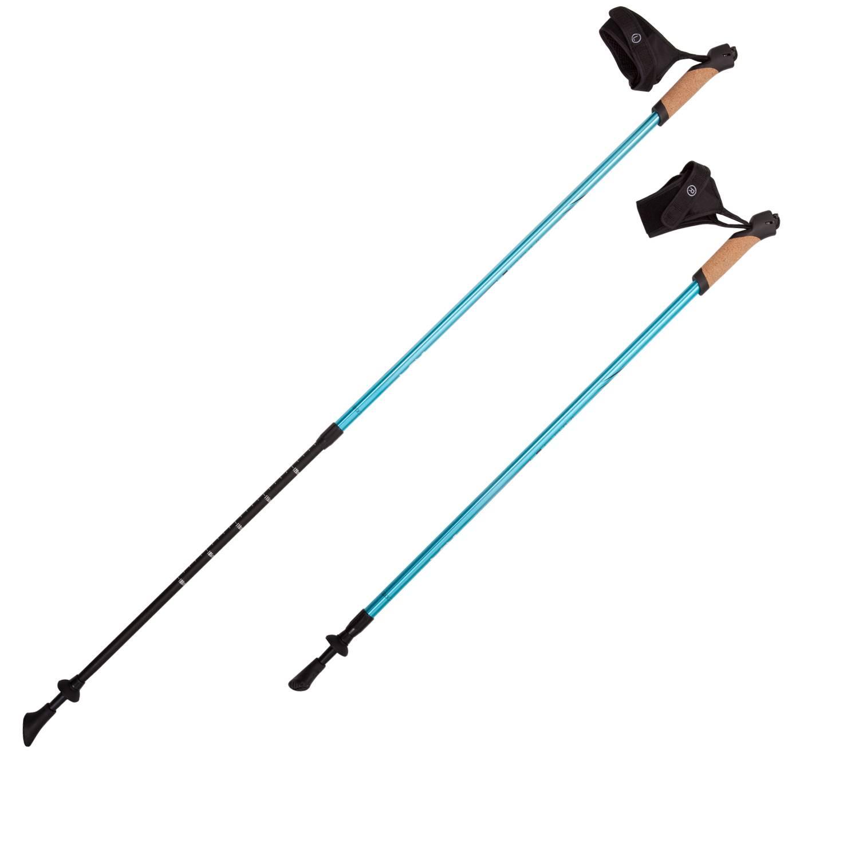 Палки для скандинавской ходьбы RGX NWS-14, голубой палки для скандинавской ходьбы komperdell carbon forza длина 120 см 2 шт