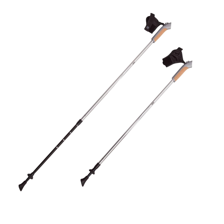 Палки для скандинавской ходьбы RGX NWS-13, черный палки для скандинавской ходьбы komperdell carbon forza длина 120 см 2 шт