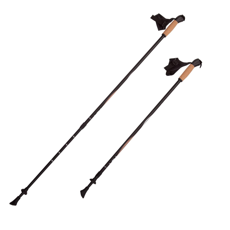 Палки для скандинавской ходьбы RGX NWS-11, черный палки для скандинавской ходьбы komperdell carbon forza длина 120 см 2 шт