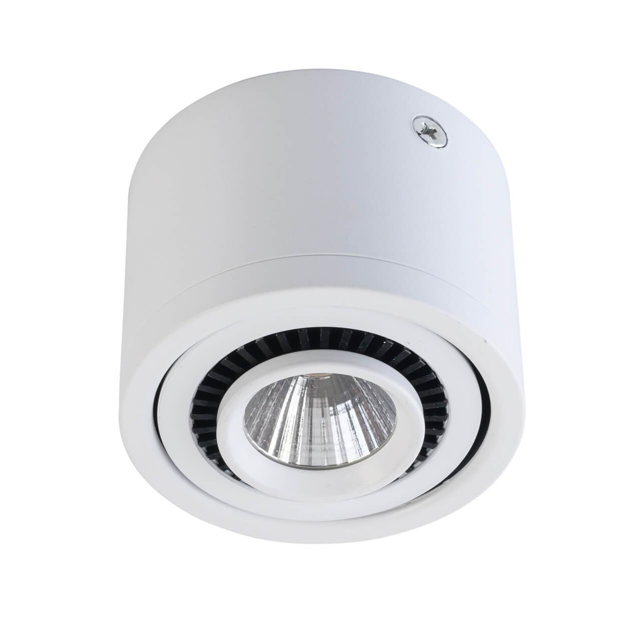 Потолочный светильник De Markt 637017101, белый цена