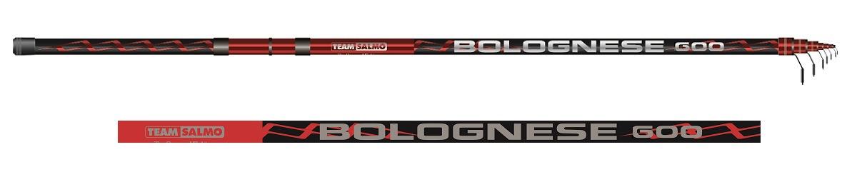 Удилище Salmo Team Salmo Bolognese 6.00, 5550-600