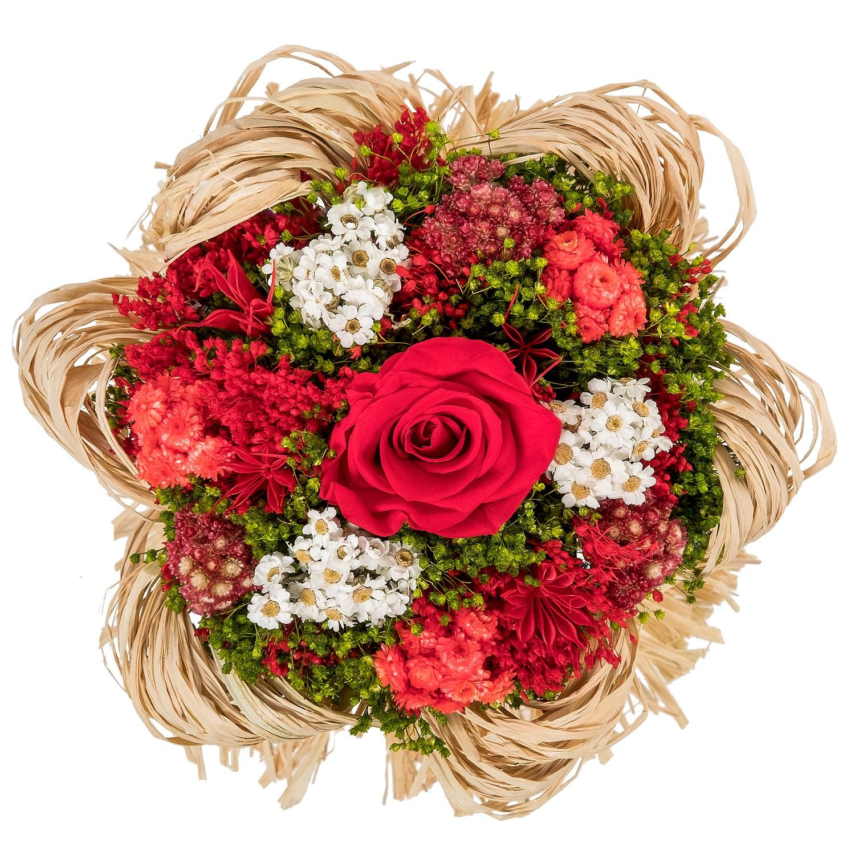 все цены на Букет из сухих и стабилизированных цветов Раффия красный онлайн