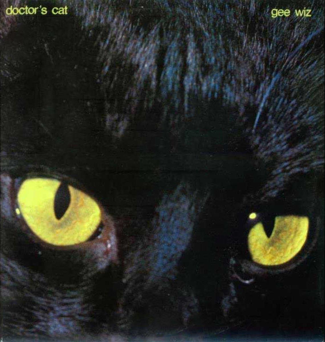 Doctor's Cat Doctor's Cat. Gee Wiz (LP) fangtastic ms wiz