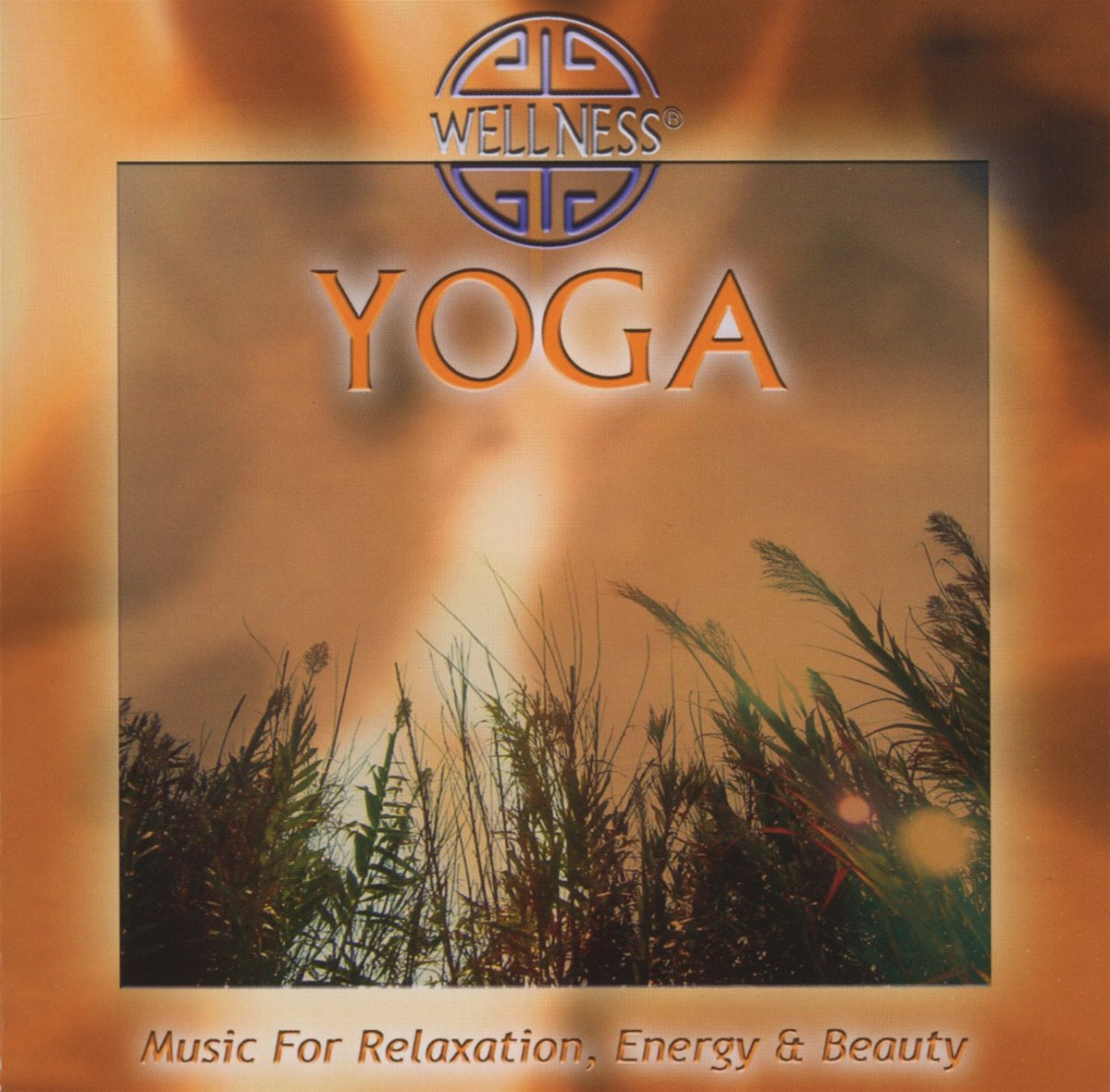 купить Guru Atman Guru Atman. Yoga - Music For Relaxation по цене 1293 рублей