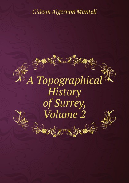 A Topographical History of Surrey, Volume 2