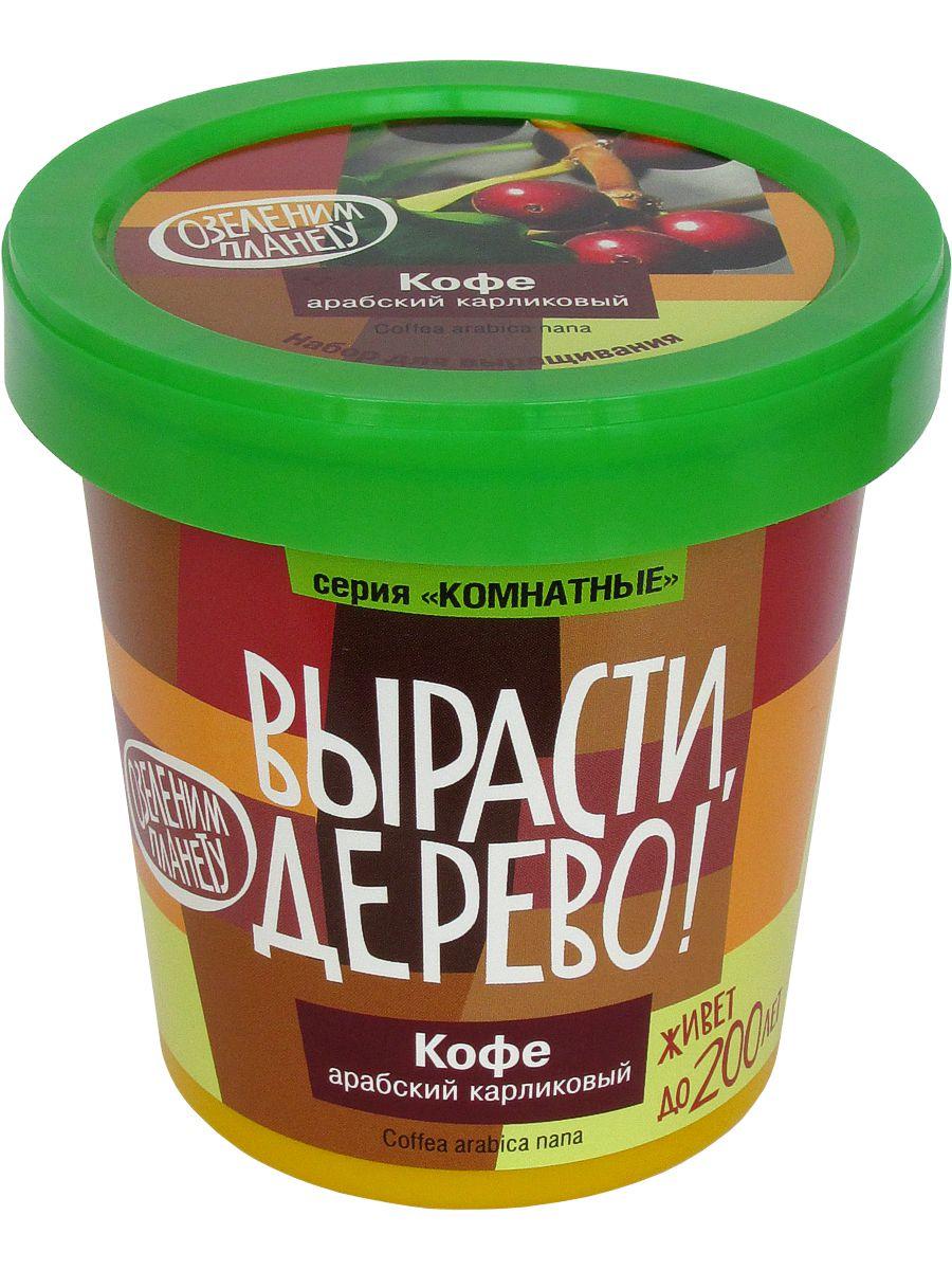 Набор для выращивания растений Кофе арабский zk-012