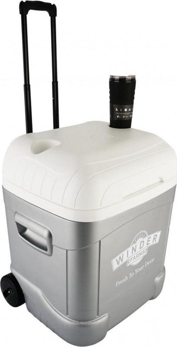 Изотермический контейнер Igloo Ice Cube, 00048101, серый, 52 х 47 х 60 см
