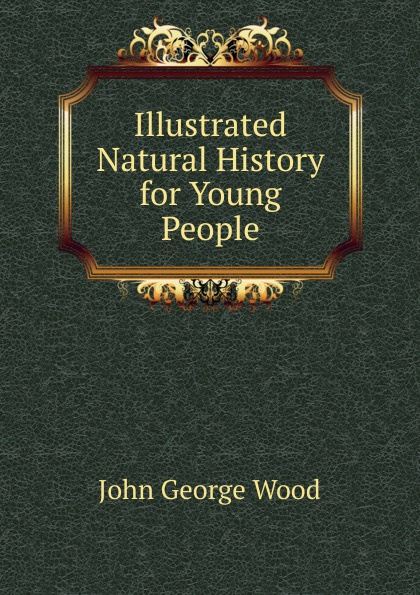 J. G. Wood Illustrated Natural History for Young People j c macy young people s illustrated history of music
