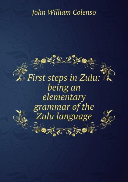 John William Colenso First steps in Zulu: being an elementary grammar of the Zulu language george bayldon an elementary grammar of the old norse or icelandic language
