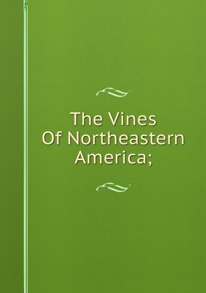 The Vines Of Northeastern America;