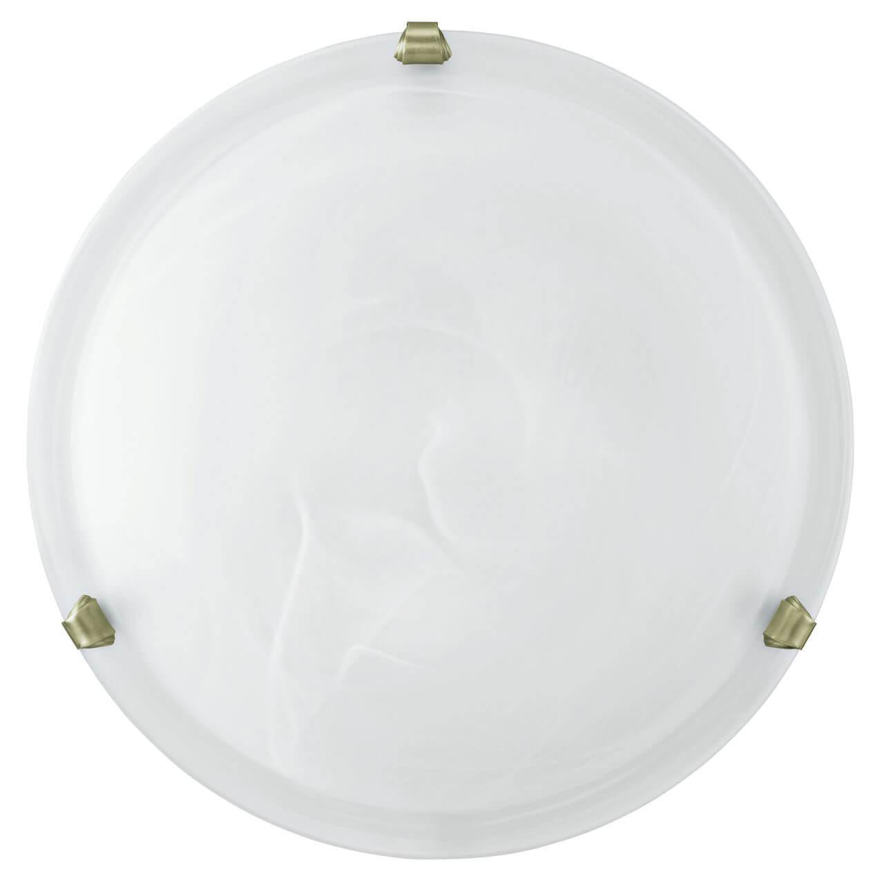 Настенно-потолочный светильник Eglo 7902, белый настенно потолочный светильник eglo 83155 белый