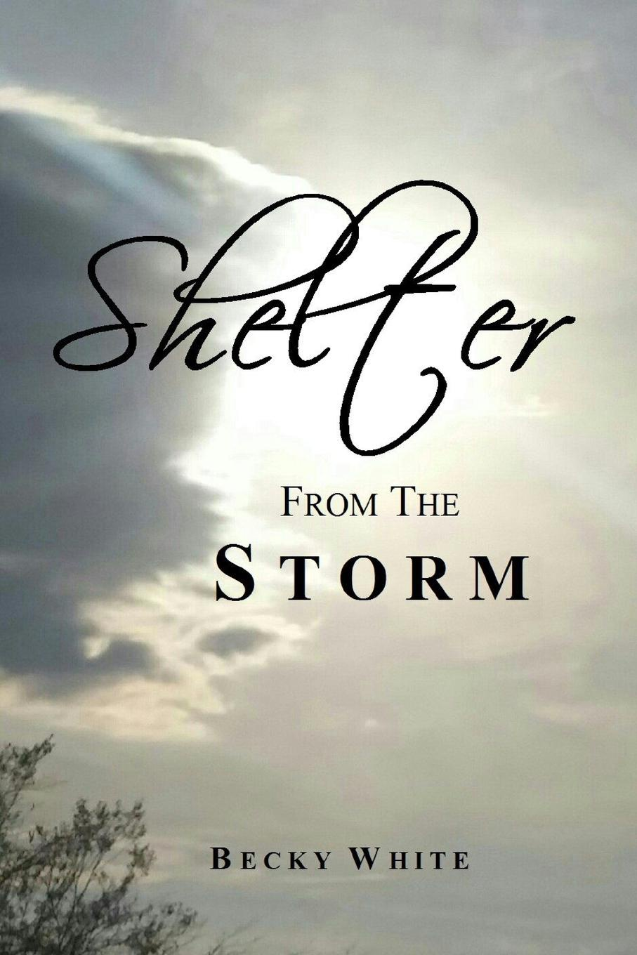 Becky White Shelter from the Storm nina rae springfields the power of hope