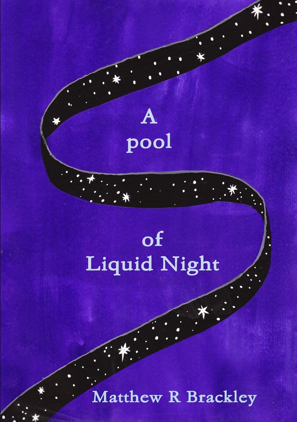 Matthew R Brackley A pool of Liquid Night matthew r brackley shadowfire