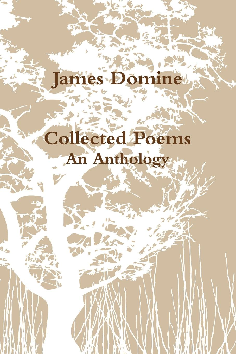 James Domine Collected Poems highsmith p small g a summer idyll