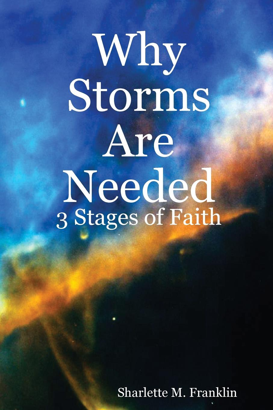 Фото - Sharlette Franklin Why Storms Are Needed amity shlaes it s not as bad as you think why capitalism trumps fear and the economy will thrive