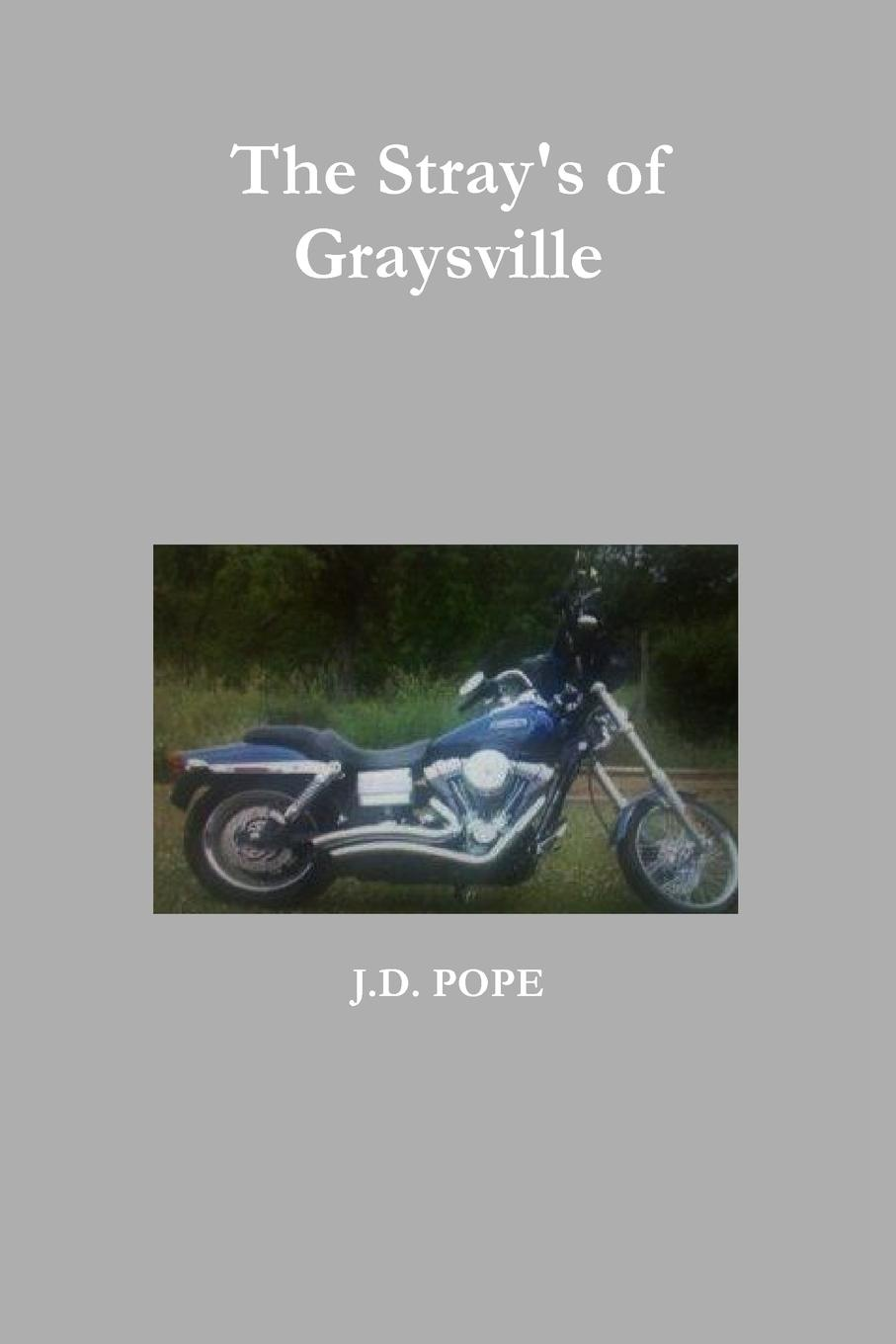 J. D. Pope The Stray.s of Graysville j d pope hallow a vampire hunters story