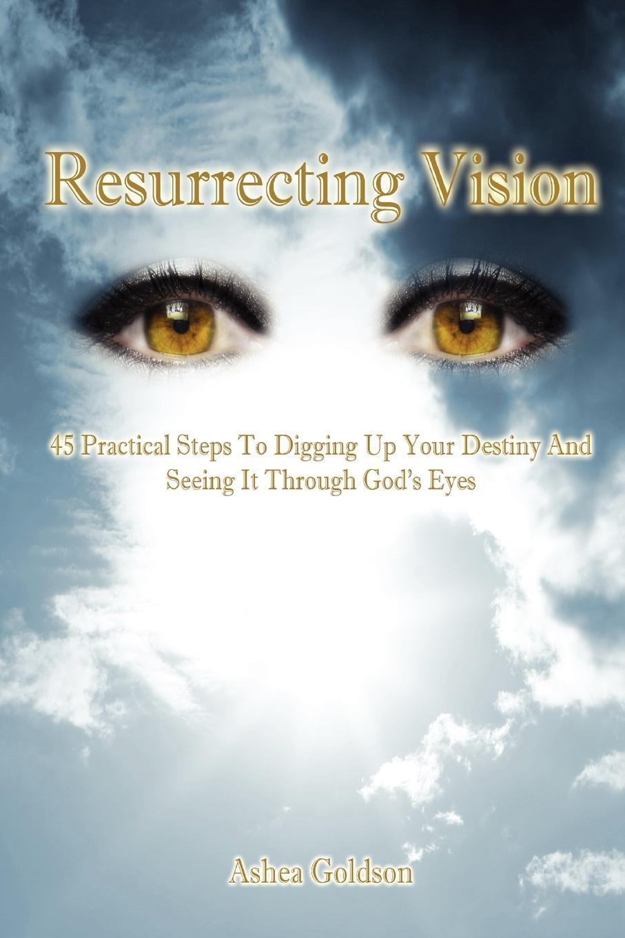 Ashea Goldson Resurrecting Vision. 45 Practical Steps to Digging Up Your Destiny and Seeing It Through God.s Eyes seeing through race page 9