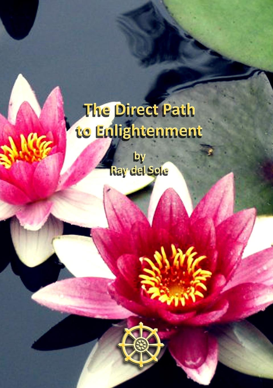 Ray del Sole The Direct Path to Enlightenment a novykh spiritual practices and meditations