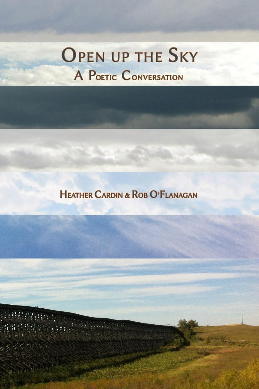 цены на Heather Cardin, Rob O'Flanagan Open up the Sky  в интернет-магазинах