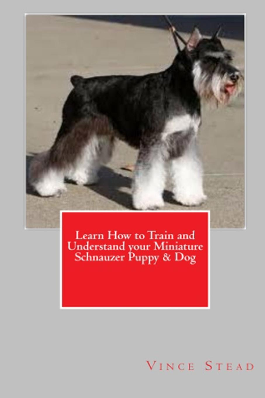 Vince Stead Learn How to Train and Understand your Miniature Schnauzer Puppy . Dog cuteroom dollhouse miniature dining room diy kit with cover and led