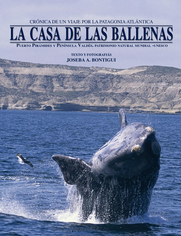 Joseba Andoni Bontigui Eskisabel La casa de las ballenas
