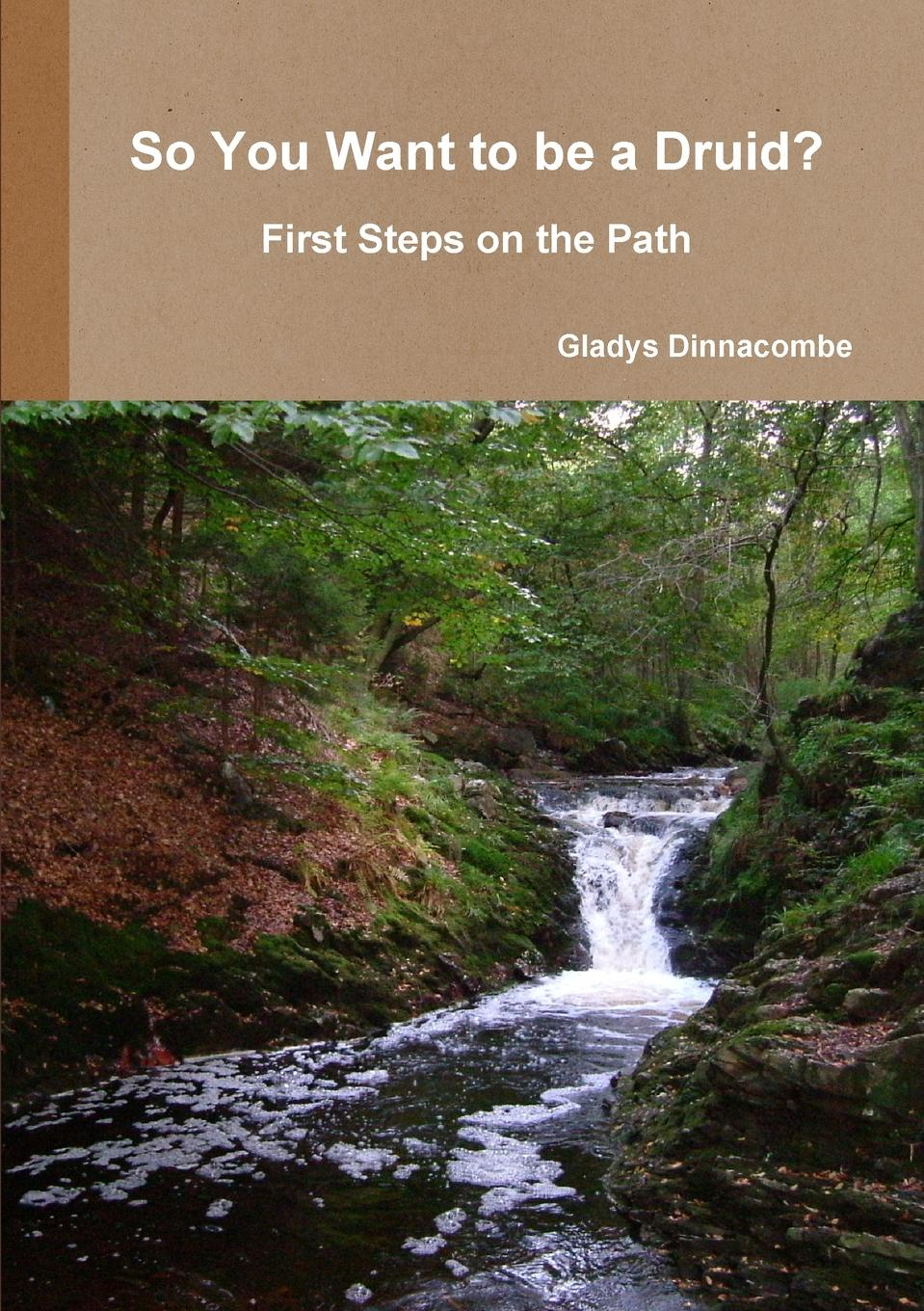 Gladys Dinnacombe So You Want to Be a Druid. - First Steps on the Path gladys dinnacombe so you want to be a druid first steps on the path
