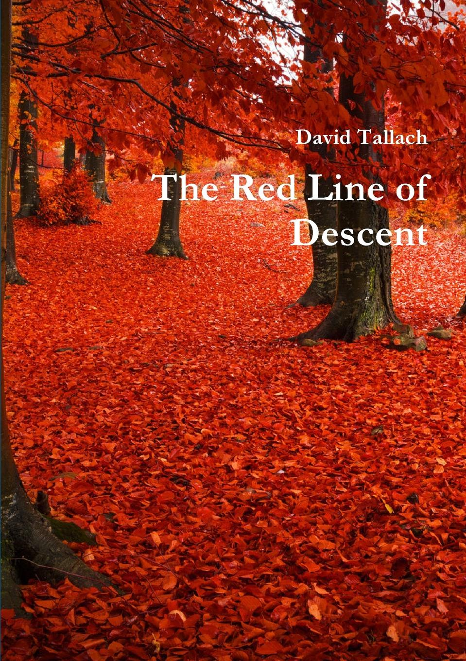 David Tallach The Red Line of Descent winter sea of red 200 68