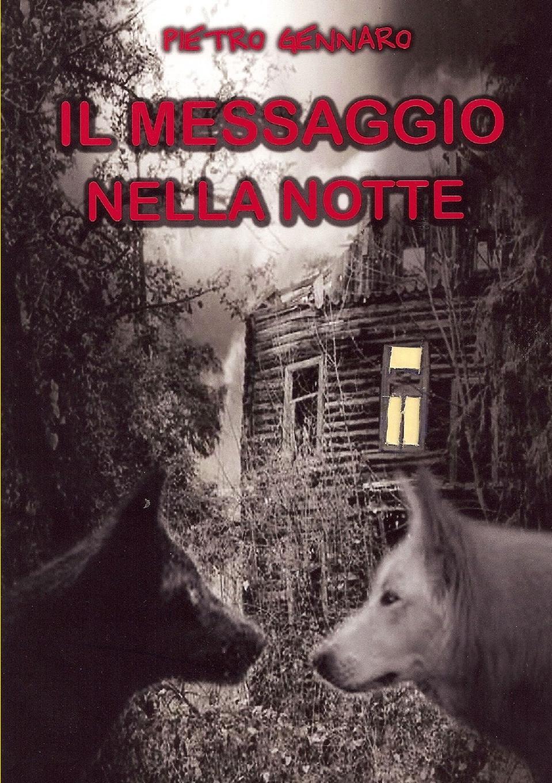 Pietro Gennaro Il messaggio nella notte gennaro canistro percorso inverso