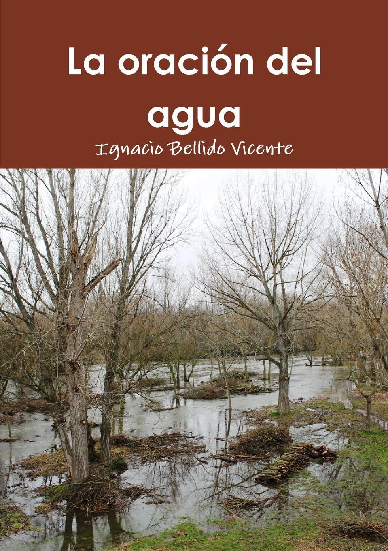 Ignacio Bellido Vicente La oracion del agua поль бурже a agua profunda