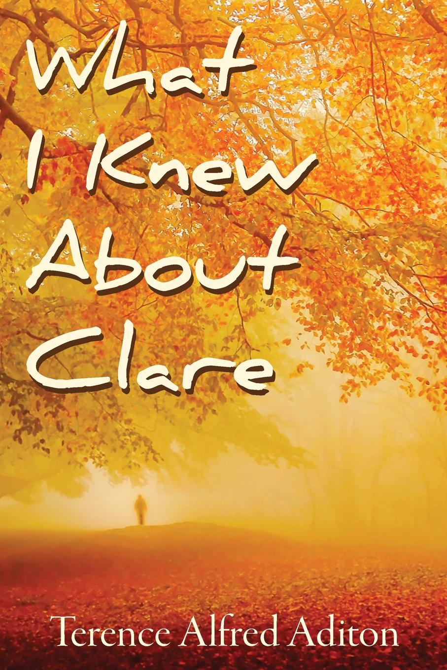 Terence Alfred Aditon What I Knew About Clare