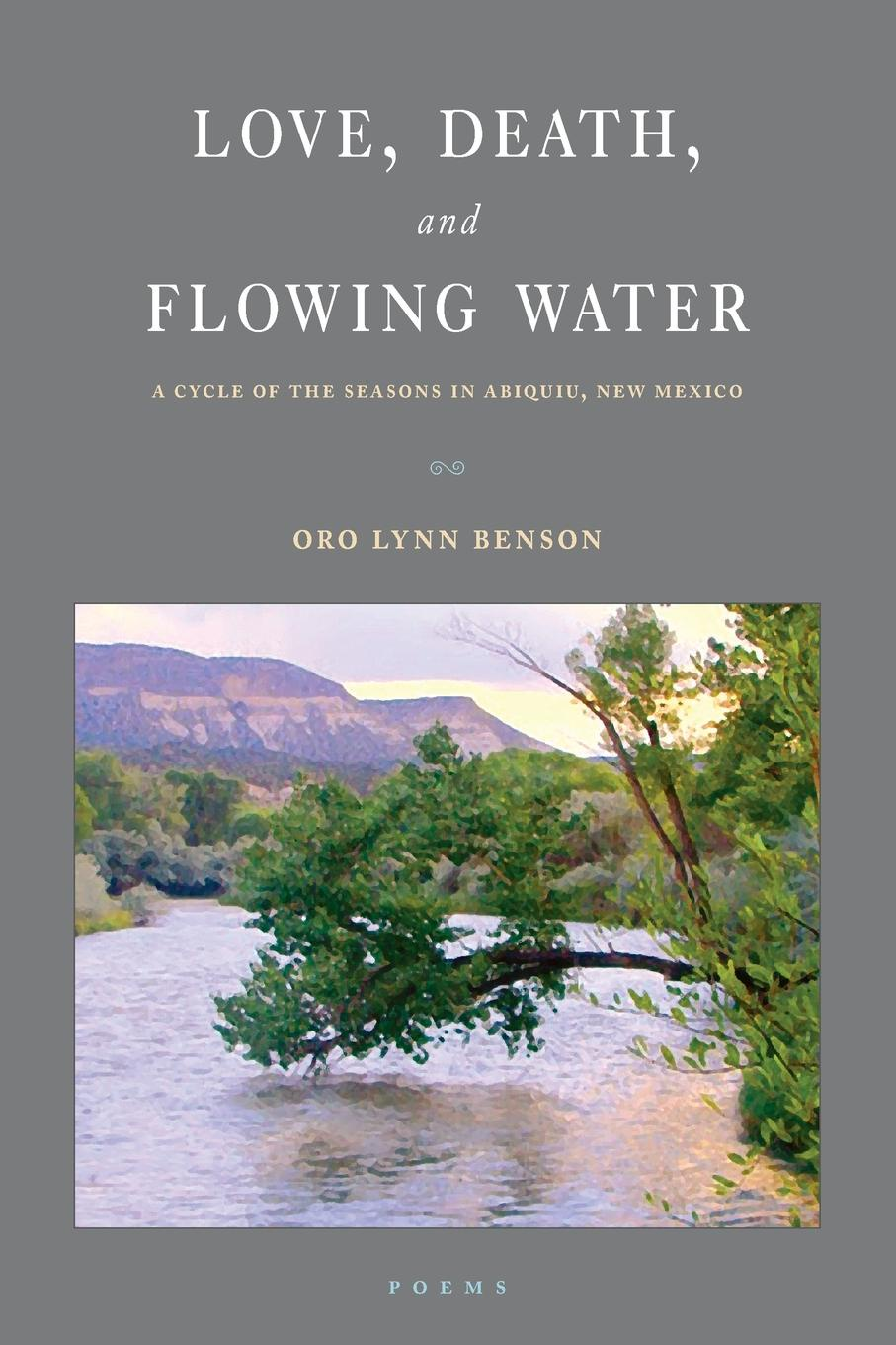 Oro Lynn Benson Love, Death and Flowing Water. A Cycle of Seasons in Abiquiu, New Mexico miraculous images and votive offerings in mexico