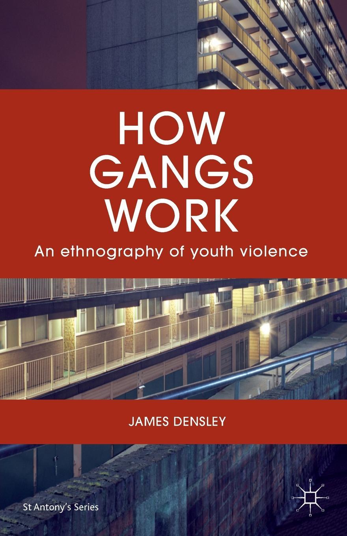 James Densley How Gangs Work. An Ethnography of Youth Violence the magic gang the magic gang the magic gang