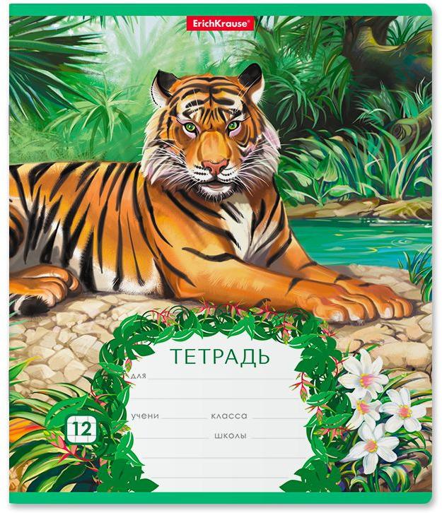 Тетрадь школьная ErichKrause Джунгли, A5+, в клетку, 46540, мультиколор, 12 листов х 10 шт