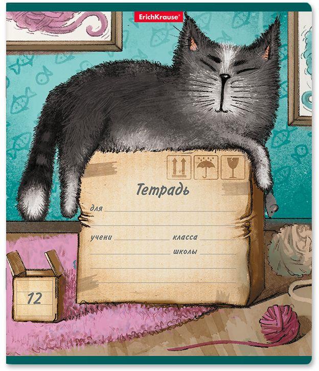 Тетрадь школьная ErichKrause Cat & Box, A5+, в линейку, 46551, мультиколор, 12 листов х 10 шт