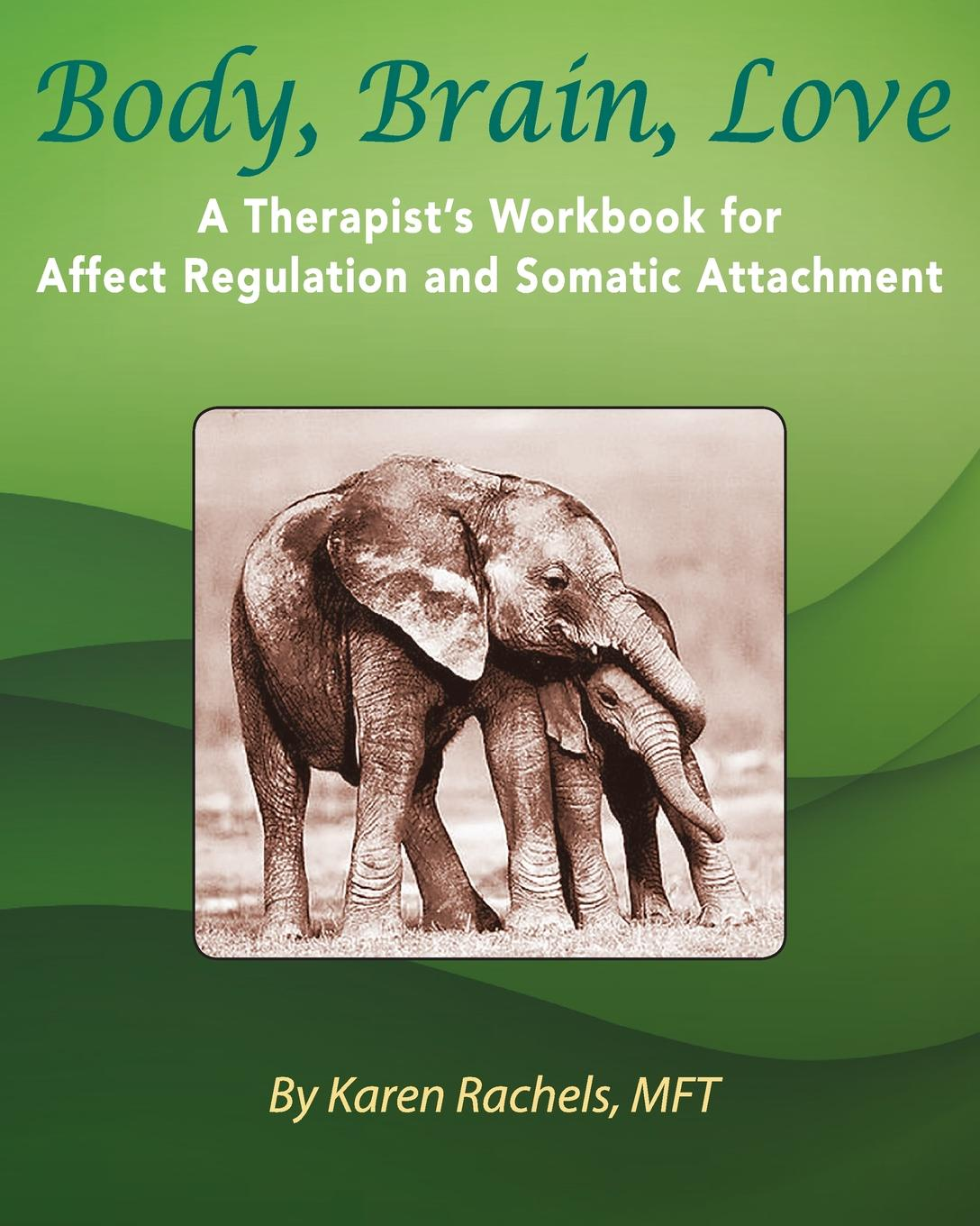 Karen Rachels Body, Brain, Love. A Therapist.s Workbook for Affect Regulation and Somatic Attachment judith horstman the scientific american book of love sex and the brain the neuroscience of how when why and who we love