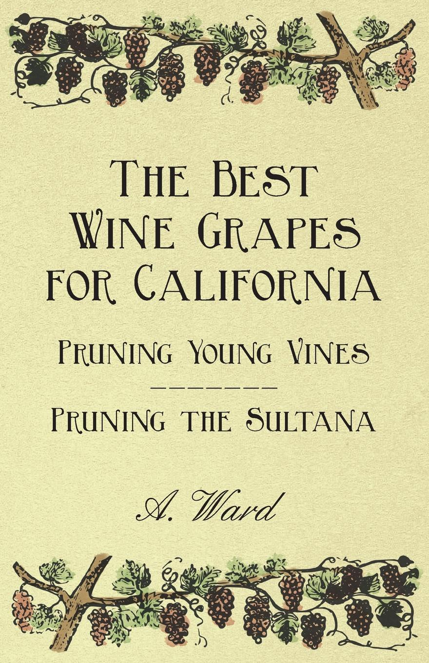 Frederic T. Bioletti The Best Wine Grapes for California - Pruning Young Vines the Sultana