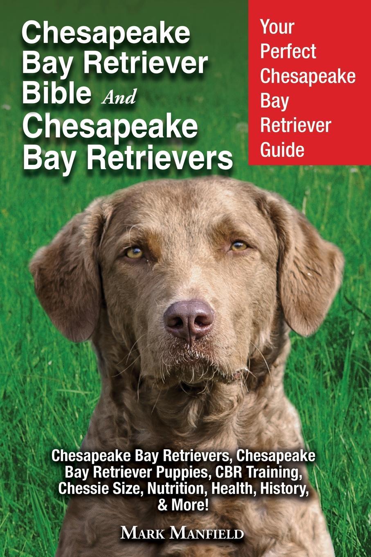 лучшая цена Chesapeake Bay Retriever Bible and Chesapeake Bay Retrievers. Your Perfect Chesapeake Bay Retriever Guide Chesapeake Bay Retrievers, Chesapeake Bay Retriever Puppies, CBR Training, Chessie Size, Nutrition, Health, History, . More.