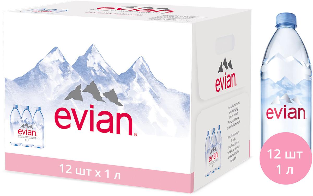 Evian вода минеральная природная столовая негазированная, 12 штук по 1 л mondariz вода минеральная природная высшей категории без газа 1 5 л