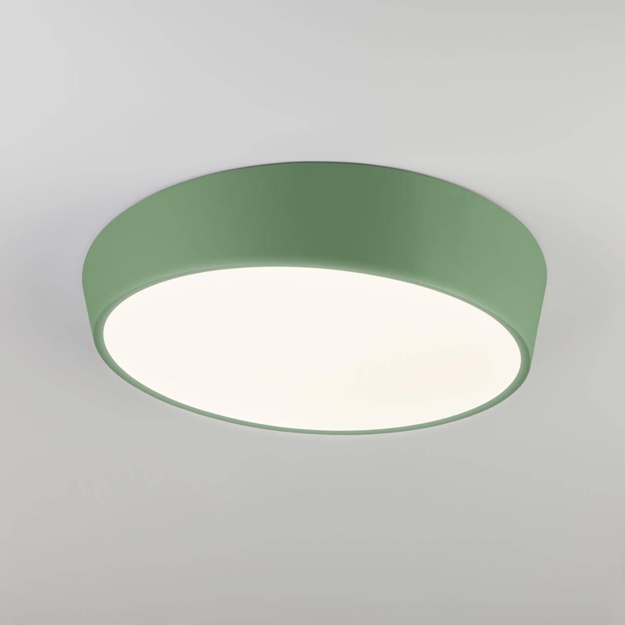 Потолочный светильник Eurosvet 90113/1 зеленый, зеленый
