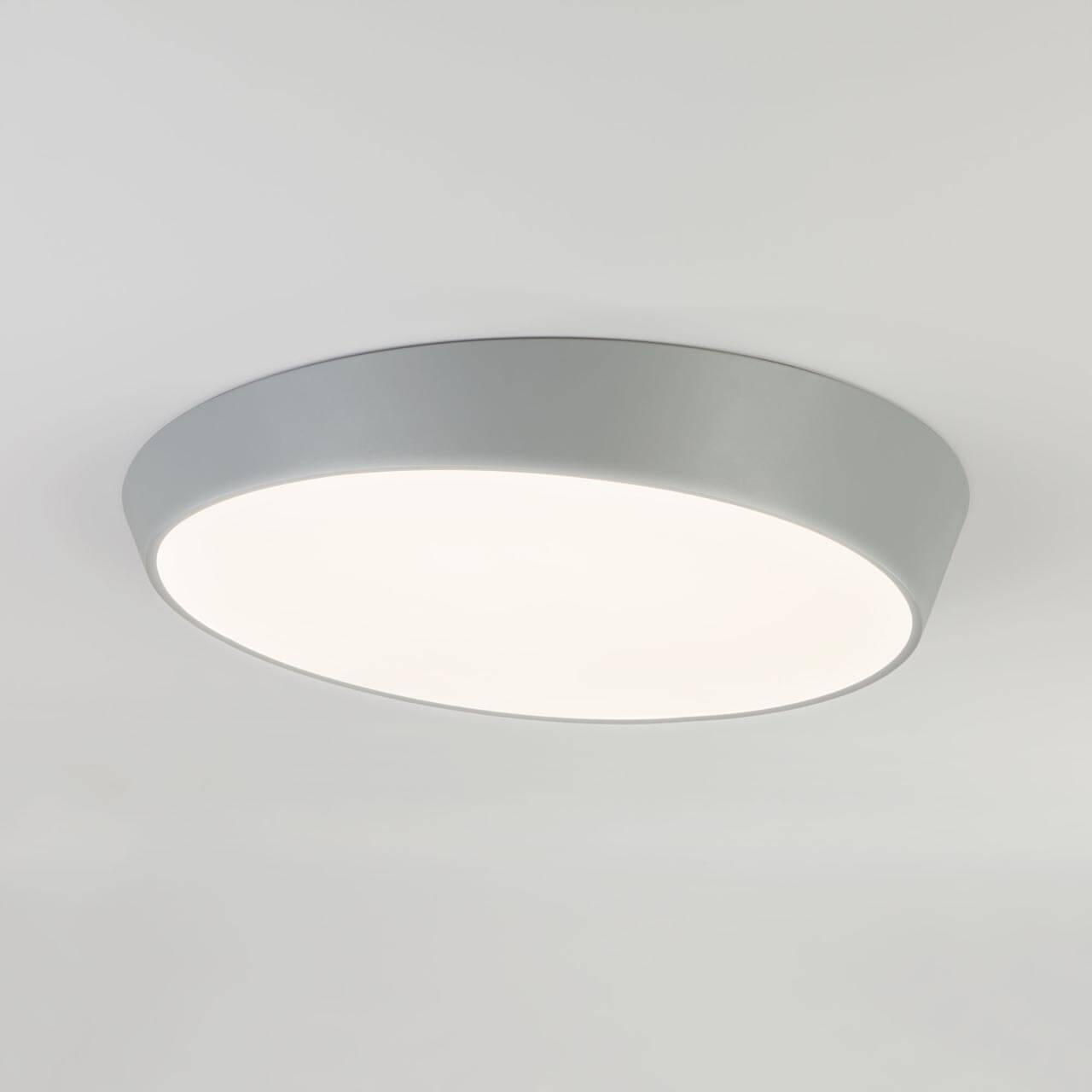 Потолочный светильник Eurosvet 90114/1 серый, серый