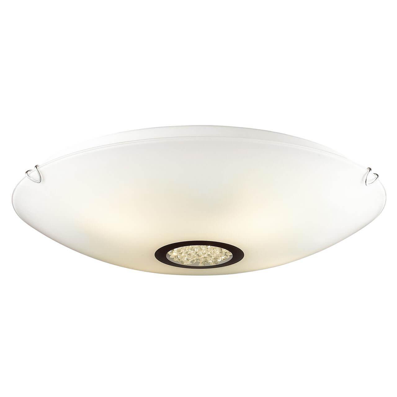Потолочный светильник Favourite 1694-4C, белый потолочный светильник favourite sibua 1713 4c