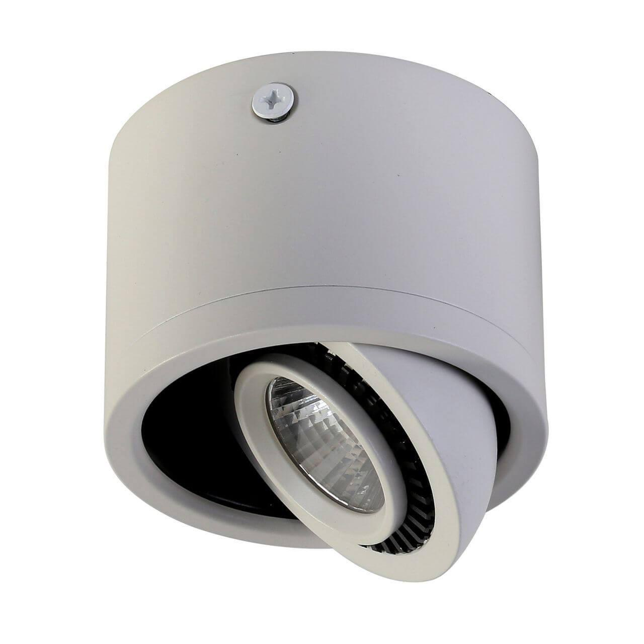 Потолочный светильник Favourite 1774-1C, белый