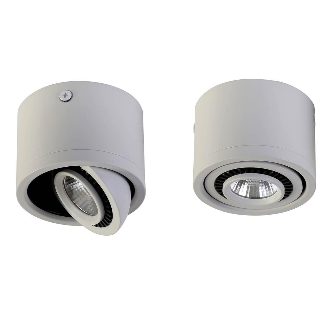 Накладной светильник Favourite 1774-1C, LED, 5 Вт