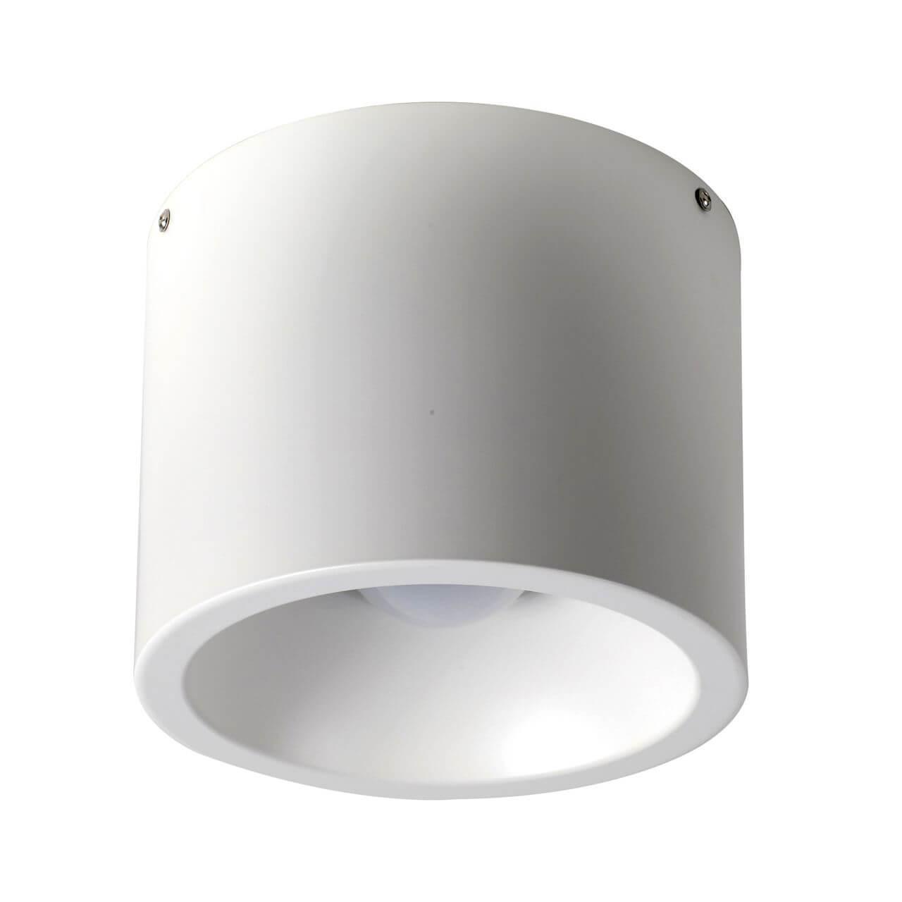 Потолочный светильник Favourite 1991-1C, белый цена